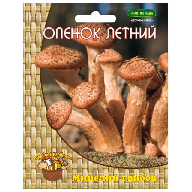 мицелий грибов Опенок летний 12 др.п. цена 2017