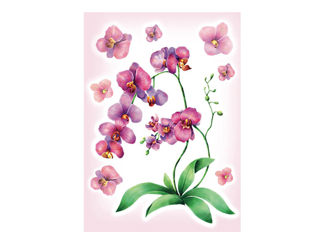 наклейка ДЕКОРЕТТО Акварельная орхидея 35х50см наклейка декоретто котята с аквариумом 50х70