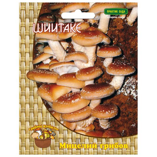мицелий грибов Шиитаке 12 др.п. шиитаке таблетки 0 56 г