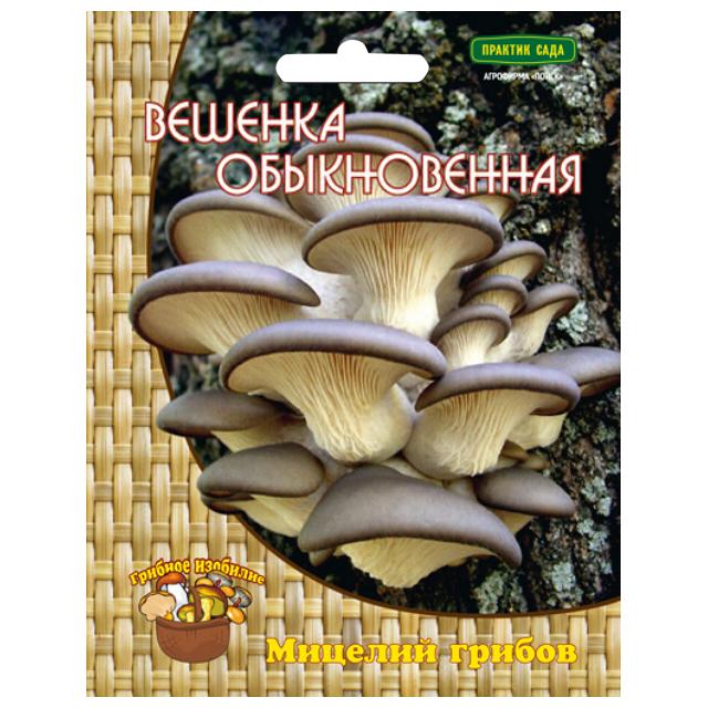 мицелий грибов Вешенка обыкновенная 12 др.п.