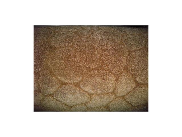 ковролин Камень 074 3,5м бежевый ts3 074 primary